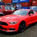Mustang_2015 (1)