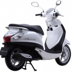 yamaha-nozza-grande-220141106045607-500